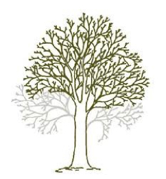 GSH-Tree-Surgery-East-Sussex-Kent-Crown-lifting.jpg